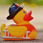 rubber-duck-1361289_1280