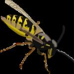 wasp-152849_1280