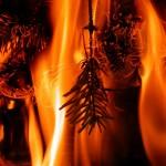Waldbrandgefahr_2